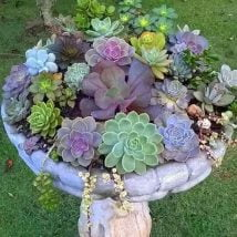 DIY Flower Garden Ideas 13 214x214 - 35+ Easy DIY Flower Garden Ideas