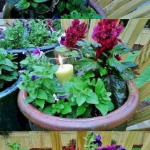 DIY Flower Garden Ideas 27 214x214 - 35+ Easy DIY Flower Garden Ideas