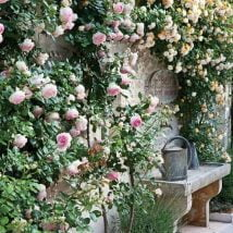 DIY Flower Garden Ideas 5 214x214 - 35+ Easy DIY Flower Garden Ideas