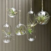 DIY Garden Globes 29 214x214 - 30+ Super Interesting DIY Garden Globes Ideas