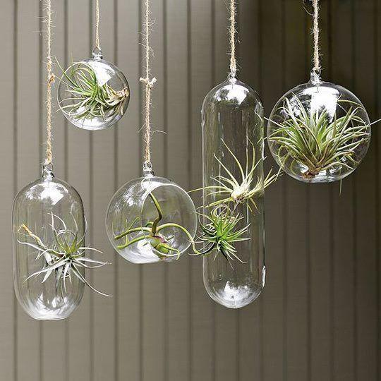 30+ Super Interesting DIY Garden Globes Ideas