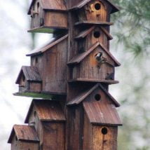Diy Bird Houses 18 214x214 - 25+ DIY Decorative Bird House