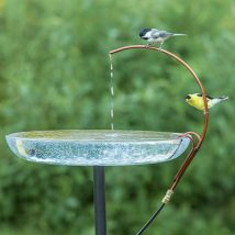 Diy Birdbath Projects 33 214x214 - 30+ Cute DIY Bird Bath Ideas To Enhance Your Garden
