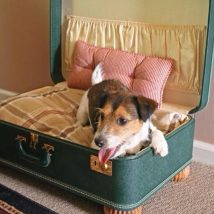 Diy Dog Houses 22 214x214 - 33+ DIY Dog House Ideas Your Best Friend Will Absolutely Love